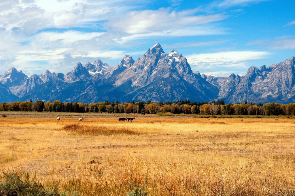 Jackson Hole - Best Places to visit in the USA