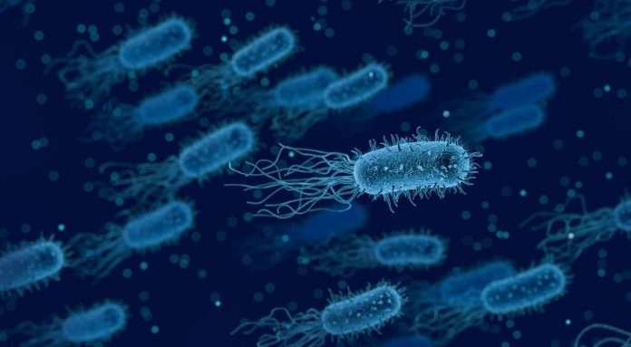 Brucellosis Outbreak in China: Is India Cautioned?